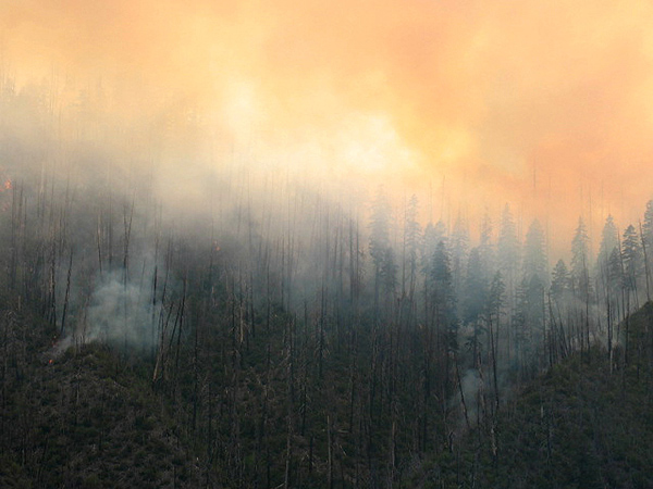 The Labrador Fire at about 9:00 p.m. July 26th.