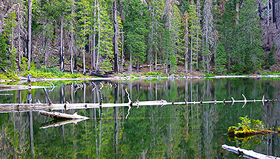 The Babyfoot Lake Botanical Area, outside the Kalmiopsis Wilderness, would be privatized under the O&C Trust Act.