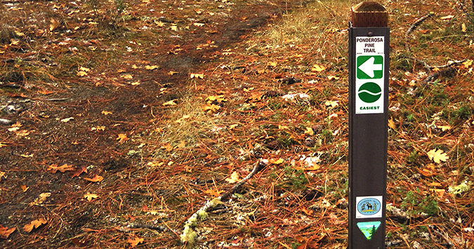 The trail system in Cathedral Hills is well marked. It's shared by mountain bikers, equestrians, joggers and hikers.