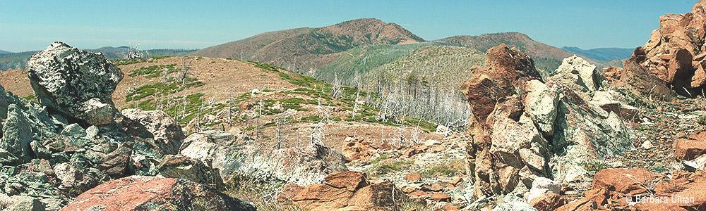 Pearsoll Peak from Whetsone