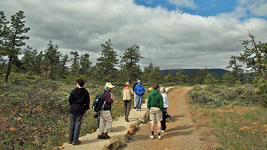 An early spring wildflower walk at the Rough and Ready Creek Area of Critical Environmental Concern. Bob Ziller photo.