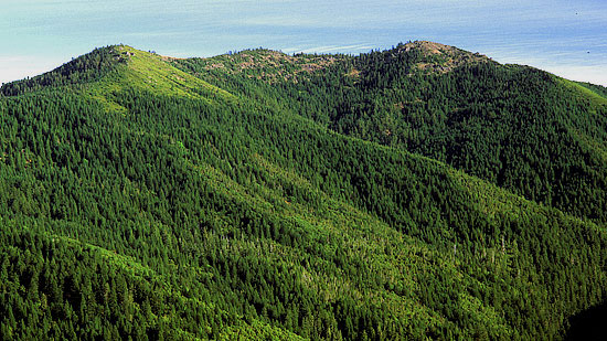 The Shasta Costa Inventoried Roadless Area is the heart of the watershed.