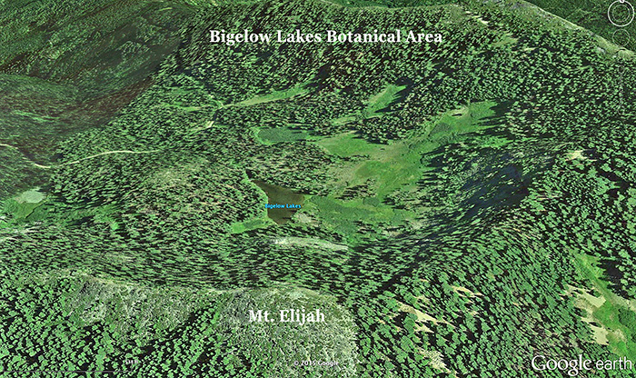The headwaters of Lake Creek, the domestic water source for visitors at the Oregon Caves National Monument is now protected. The area, known as the Bigelow Lake Botanical area is a vast area of springs and meadows.