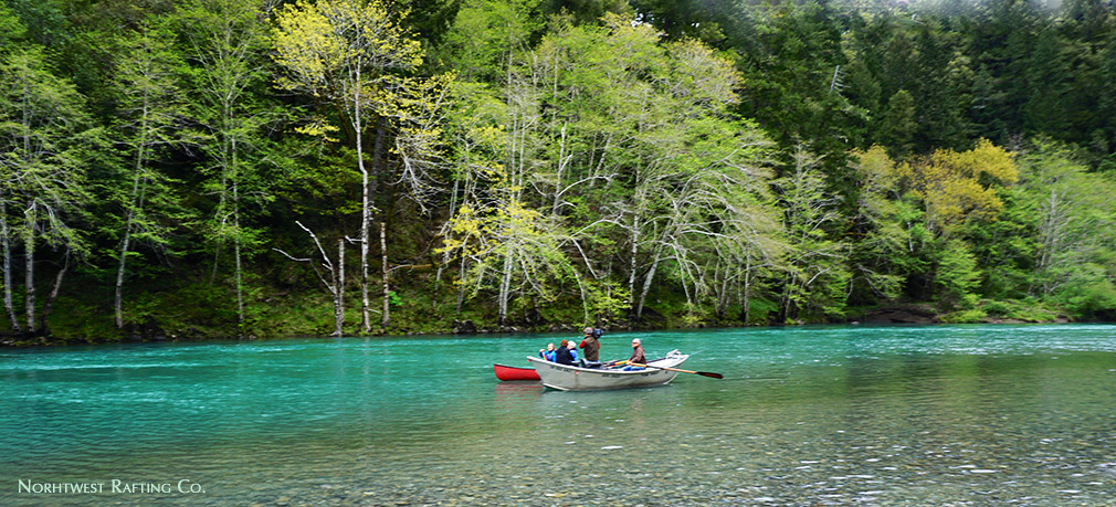 Wild and Scenic Chetco River